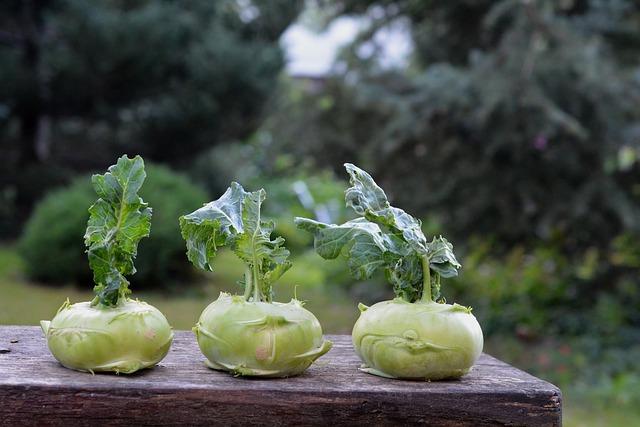 Топ 20 низкокалорийных продуктов: капуста кольраби