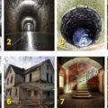 тест: выбери фото