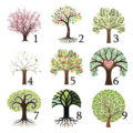 тест выберите дерево