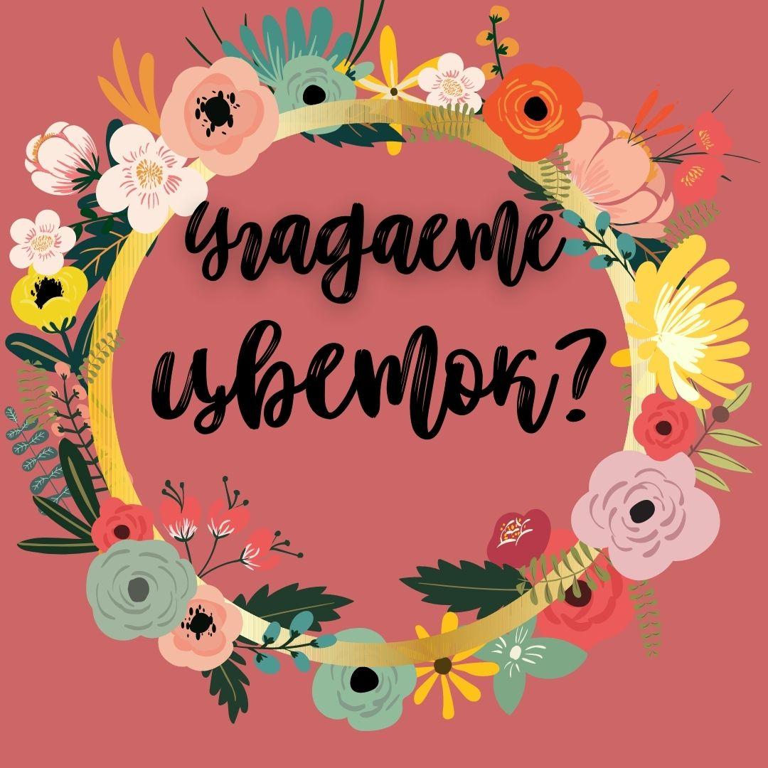 тест: угадаете цветок по фото?