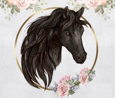 тест: выберите коня