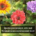 тест выбери цветок