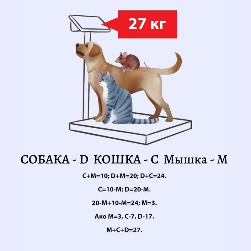головоломка: сколько весят вместе собака, кошка и мышь?