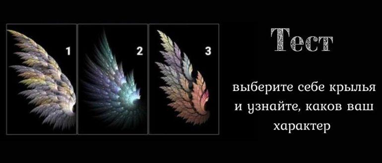 Тест: выберите себе крылья и узнайте, каков ваш характер